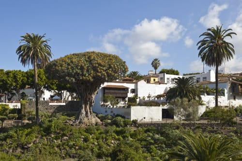 Grand Tour Tenerife Shore Excursions - Tenerife Excursions Tenerife Tours